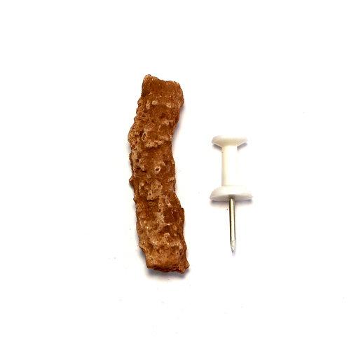 Small Sedona Fulgurite *Rare