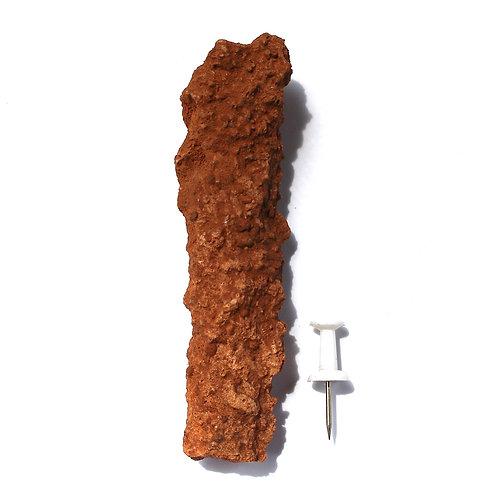 XL Fulgurite *Very Rare