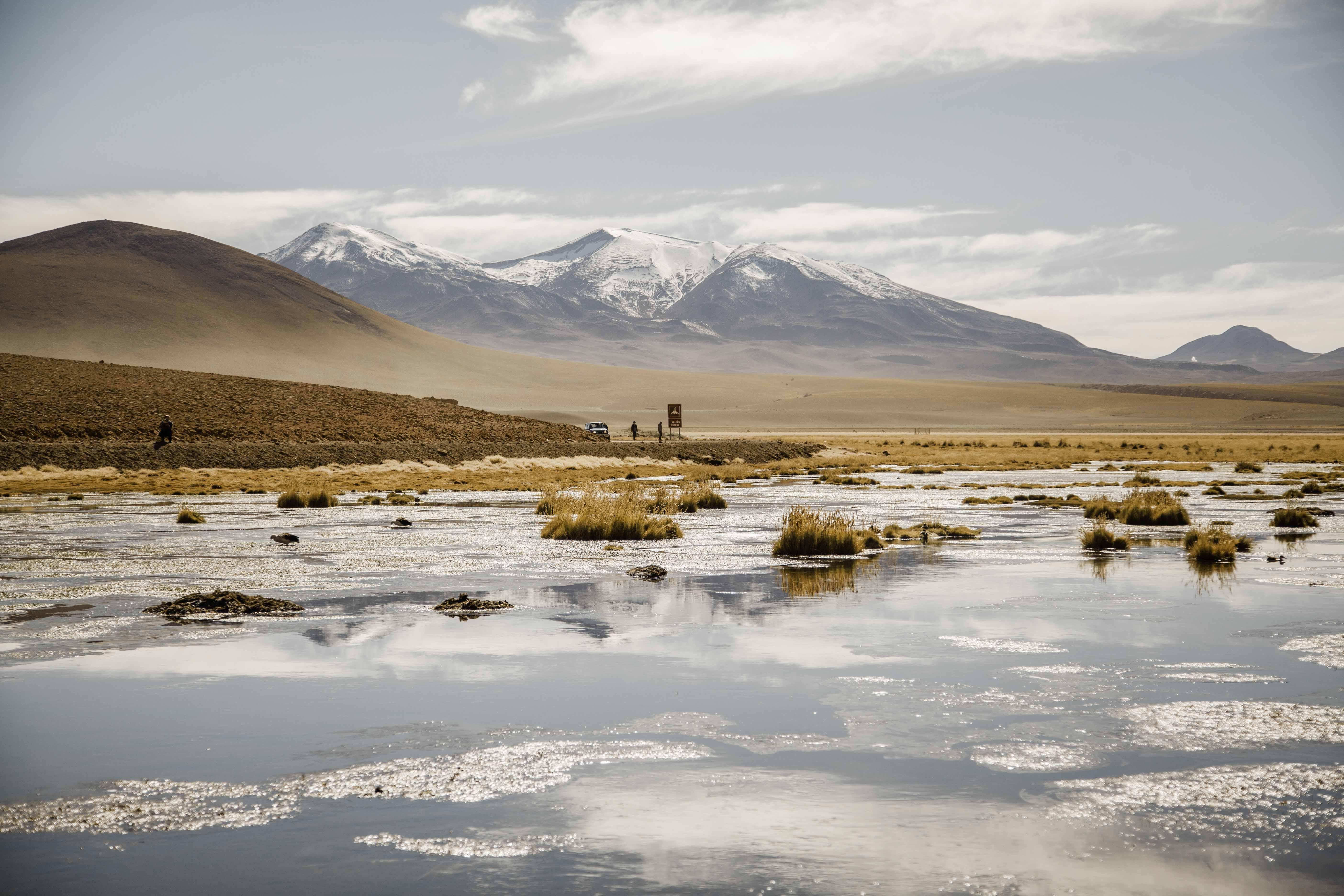 Atacama Selec-19