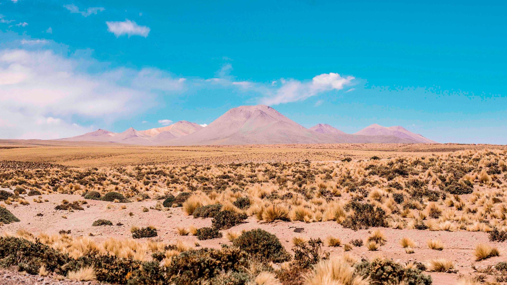 Atacama_6180.jpg