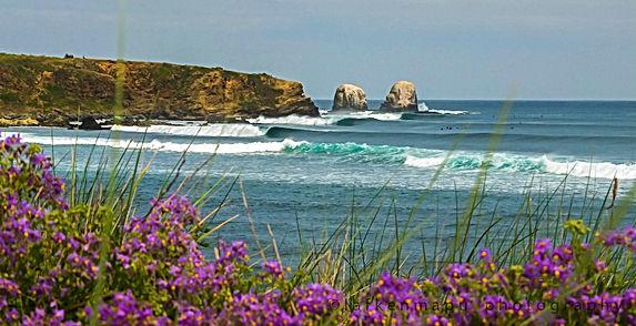 Pichilemu surf yoga camp travel Chile south america retreat pacific ocean all inclusive punta de lobos