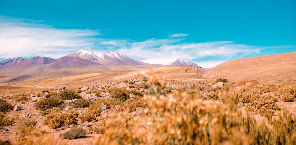 Atacama_6132.jpg