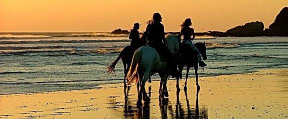 Pichilemu surf yoga camp travel Chile south america retreat pacific ocean all inclusive punta de lobos Local tour adventure experiene communnity