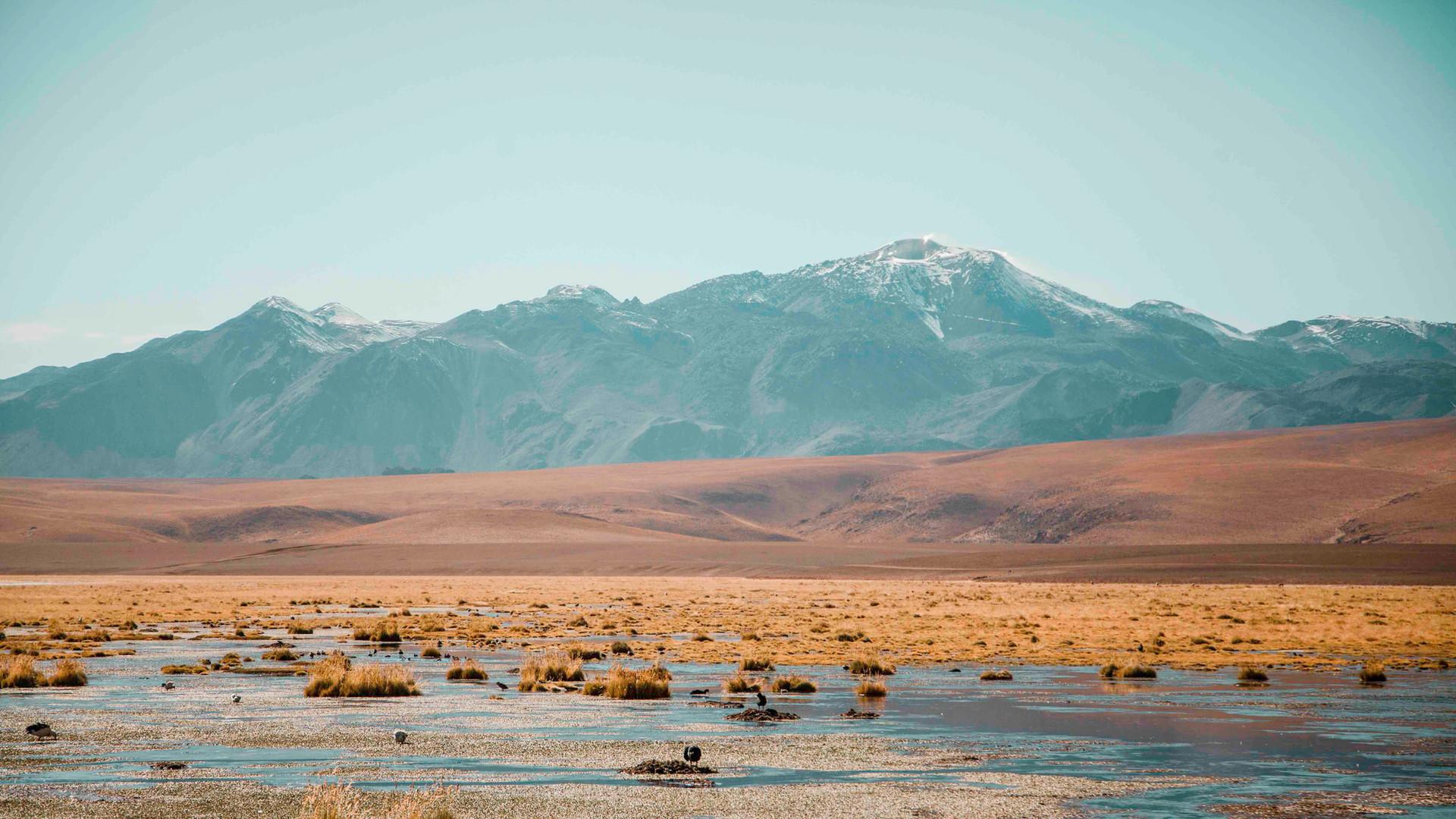 Atacama Selec-18.jpg