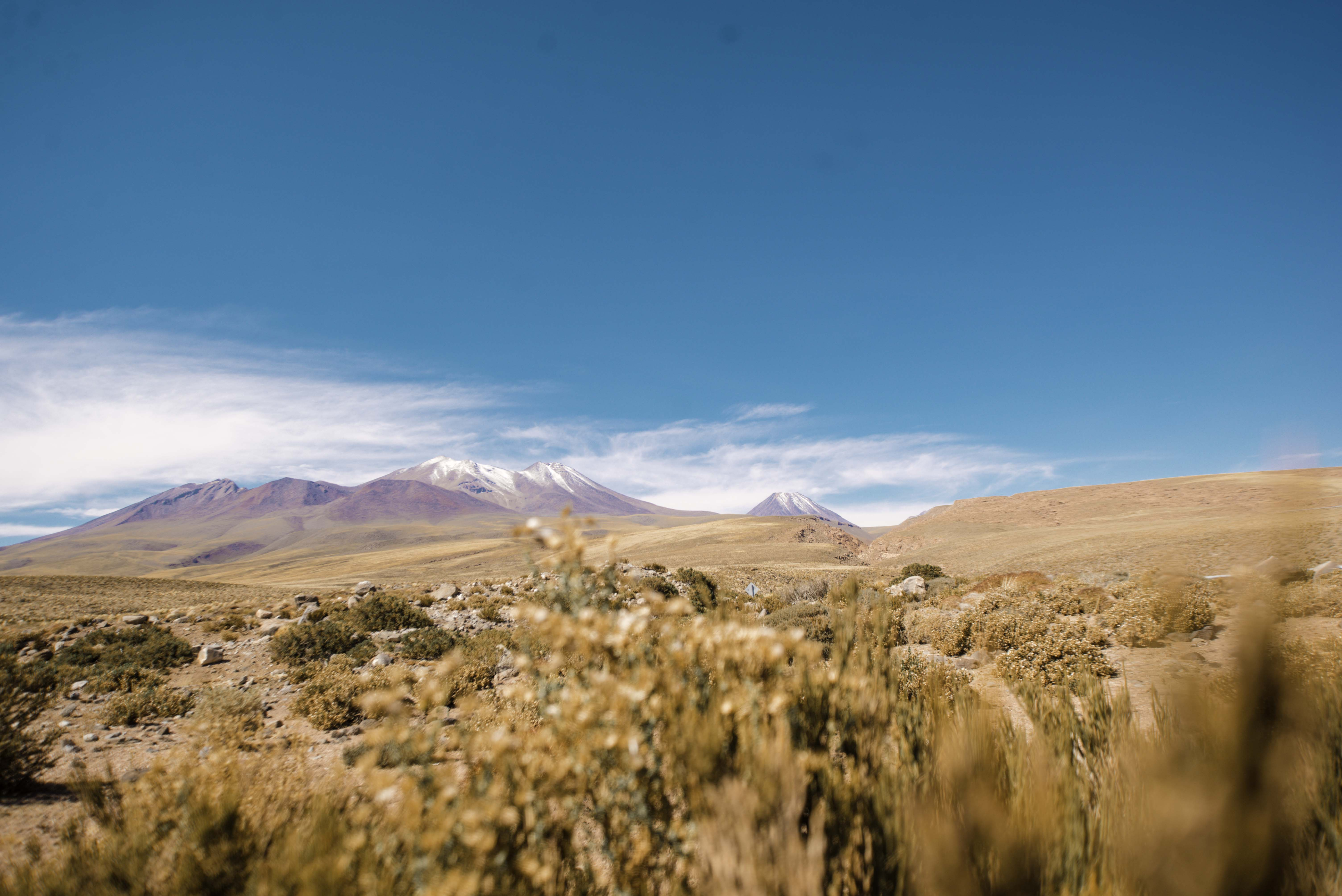 Atacama_6131