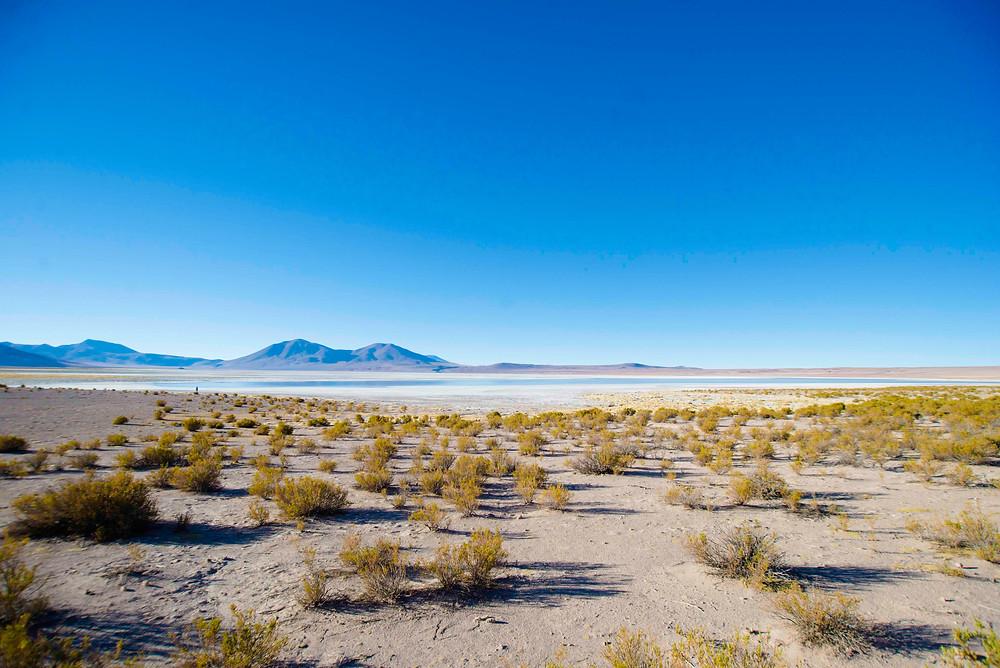 chile travel desert atacama pichilemu retreat surf camp yoga camp