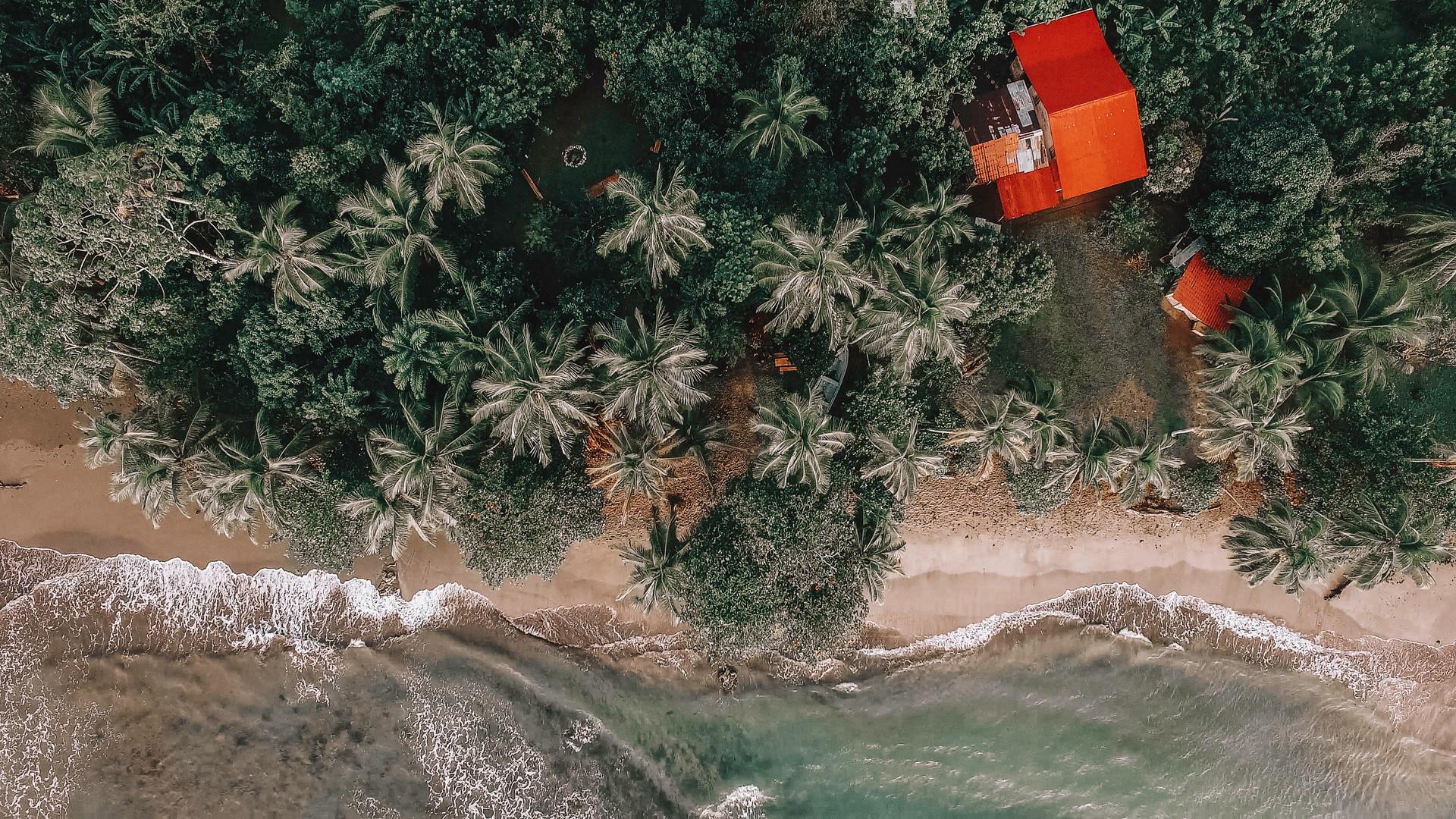 PMdrone4.jpg