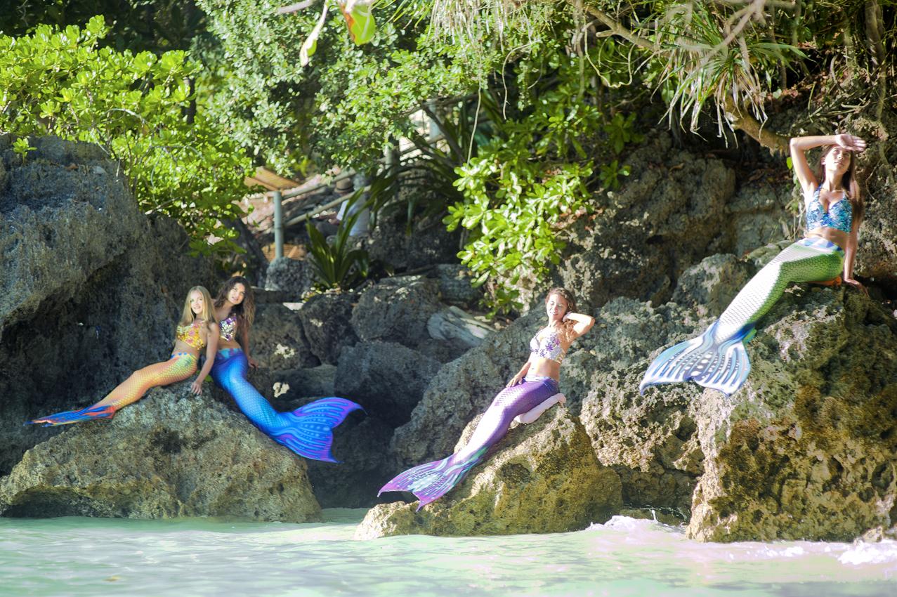 Vibrant, Dragonet, Aquamarine