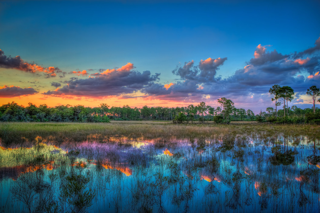 107-Marsh-Wetlands-Sunset-Sweetbay-Park-