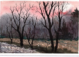 LSL February Thaw, Brandywine Valley (2)