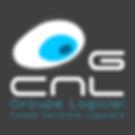 Cellule nationale logicielle.png