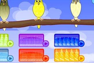birdidol.jpg