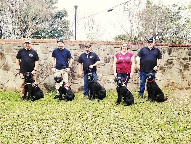 All 5 Black Lab Brothers