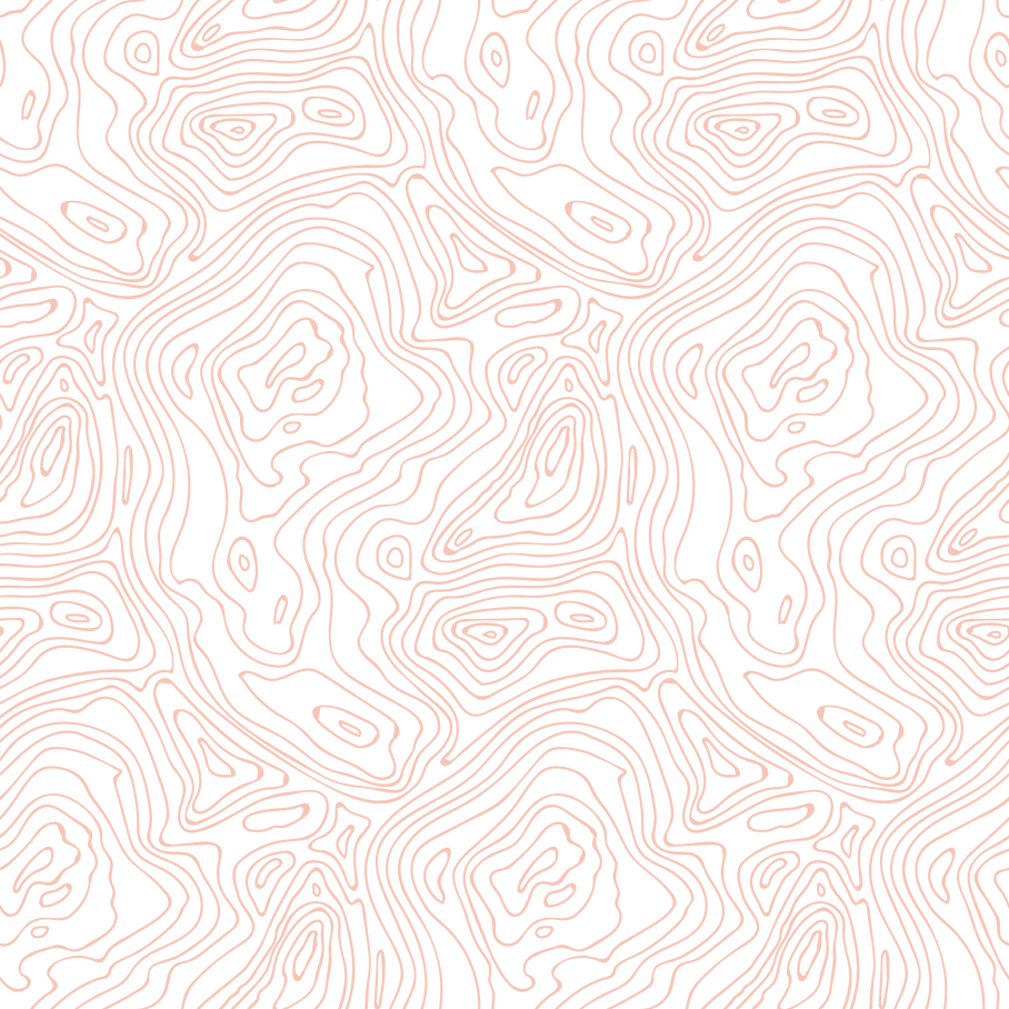 Topography.png