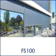 FS100.png