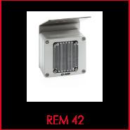 REM 42.png