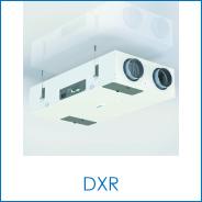 DXR.png