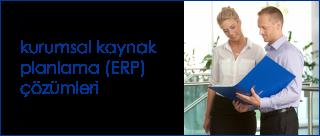 ERP çözümleri.png