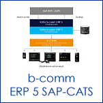 b-comm ERP 5 - SAP CATS.png