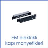 EM manyetik.png