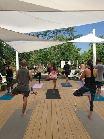 Grove Yoga