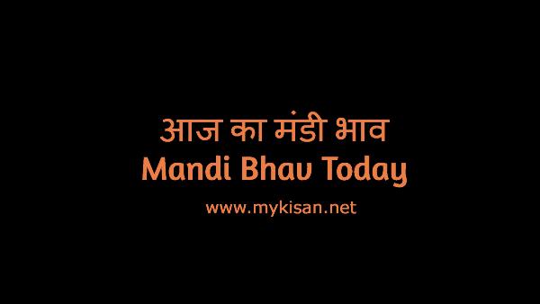 Uttar Pradesh Mandi Bhav,Bajar bhav Online,Lucknow Mandi Online,Sitapur mandi,Lakhimpur mandi,Mainpuri mandi,kannauj mandi,farukhabad mandi