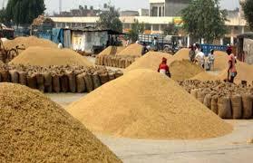 "Kisan Rath Mobile App""किसान रथ"""