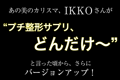 ikko_title.png