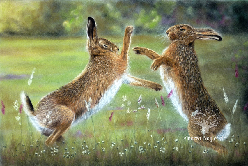 Boxing Hares contrast+.jpg