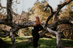 pregnant woman by tree pregnancy photos maternity photography los angeles california