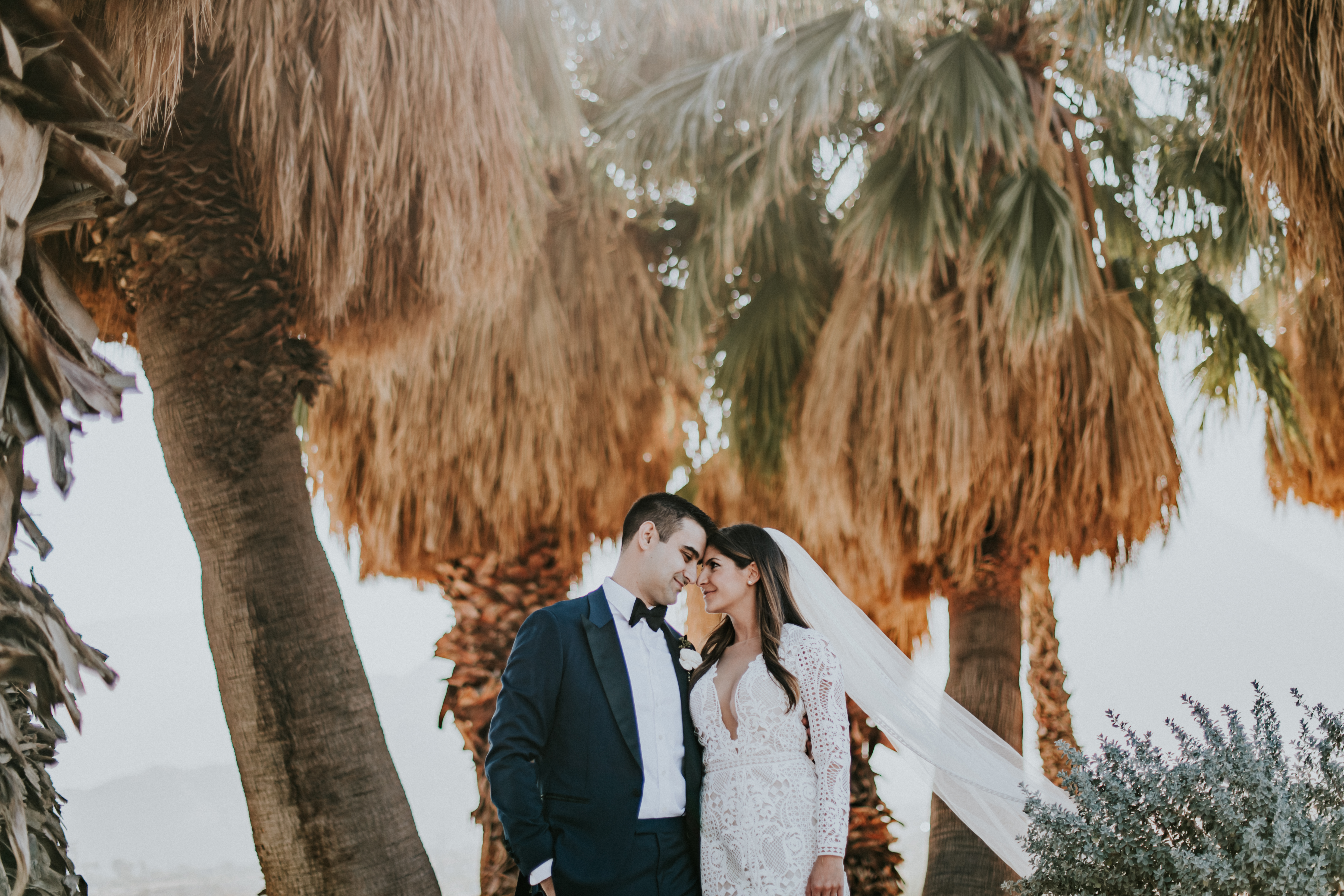 bride and groom posed forehead to forehead wedding day wedding photography palm springs