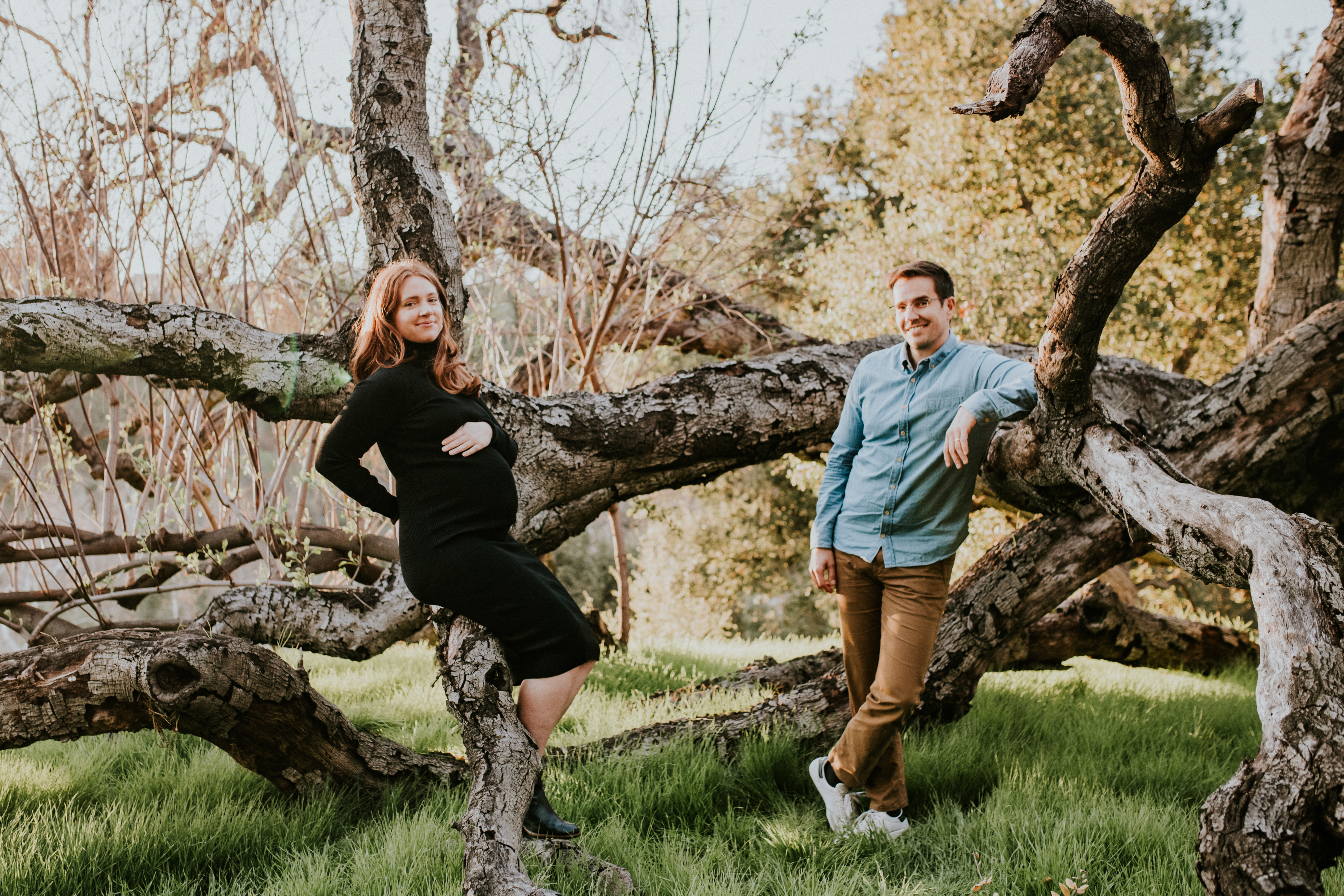 couple in tree pregnancy photos maternity photography los angeles california