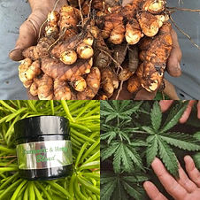 -Reduces Pain -Relaxes Muscles -Improves Circulation -Reduces Anxiety -Boosts Immune System -Eases Arthritis Pain -Hemp Oil, Turmeric Oil, Clove, Peppermint, Ginger, and Mineral Oils.