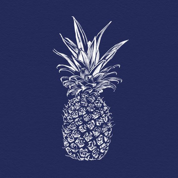 Pineapple Illustration