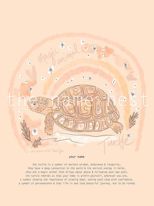 Turtle - magic animal