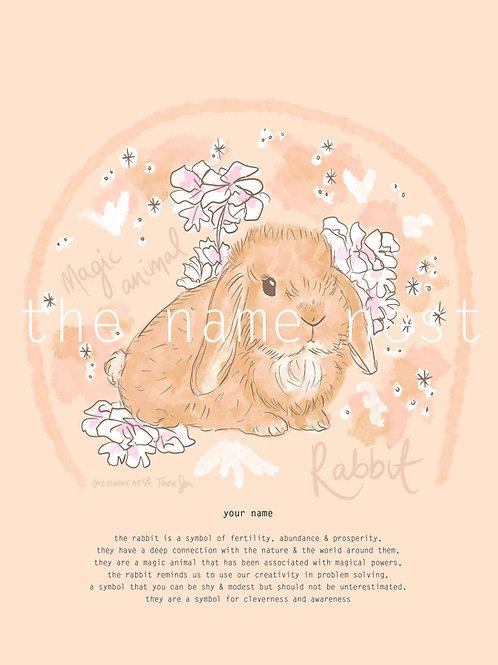 Rabbit - magic animal