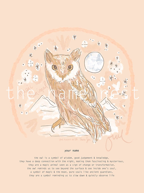 Owl - magic animal