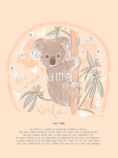 Koala - magic animal