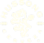 HUS-Ws Logo temporal CR.png