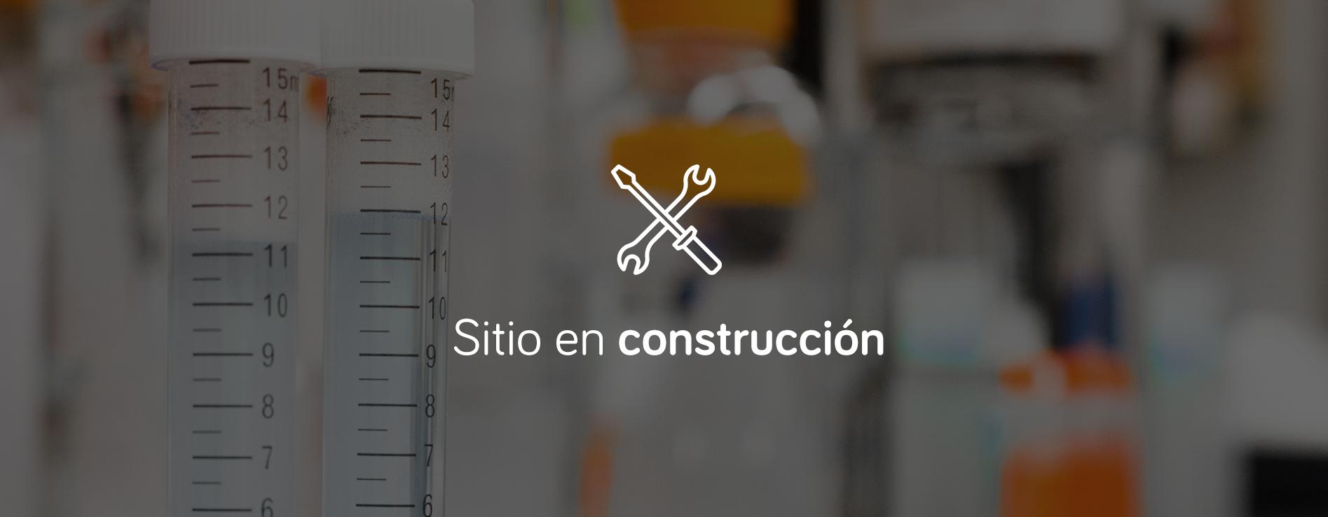 LAB-WsE1_Bajo_Construcción.png