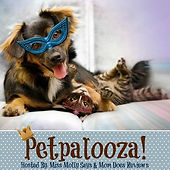 Petpalooza Log