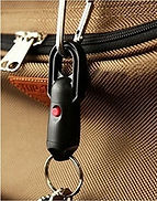 Magnetic Quick Release Keychain on Luggage