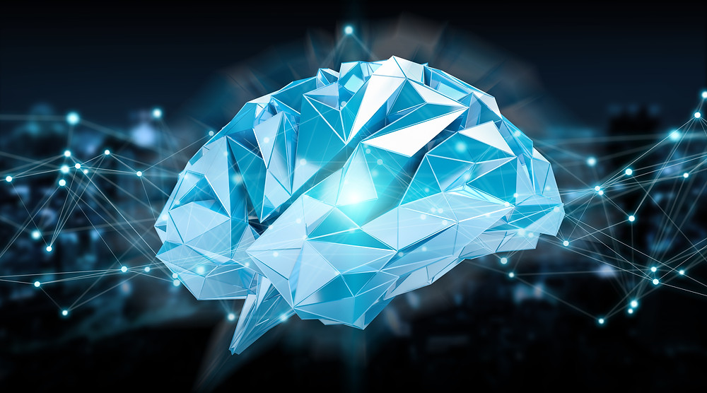 Train Your Mind and Develop the Software Needed for Peak Performance