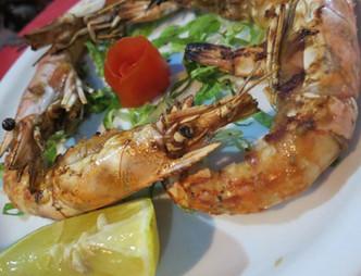 Notos Shrimp
