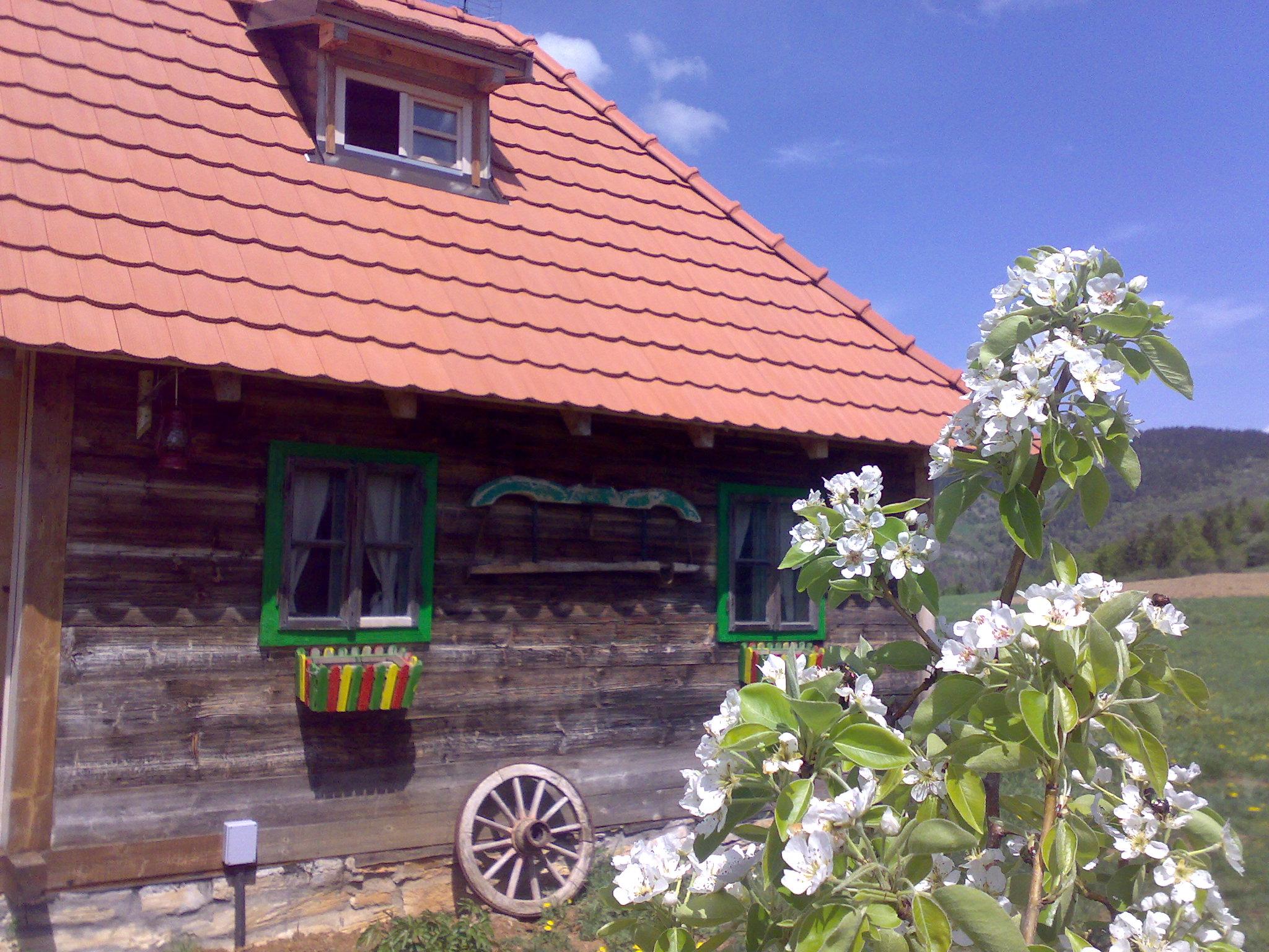 Brvnara 3, Selo Rudno, Smestaj Golij