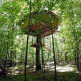 Bois landry.jpg