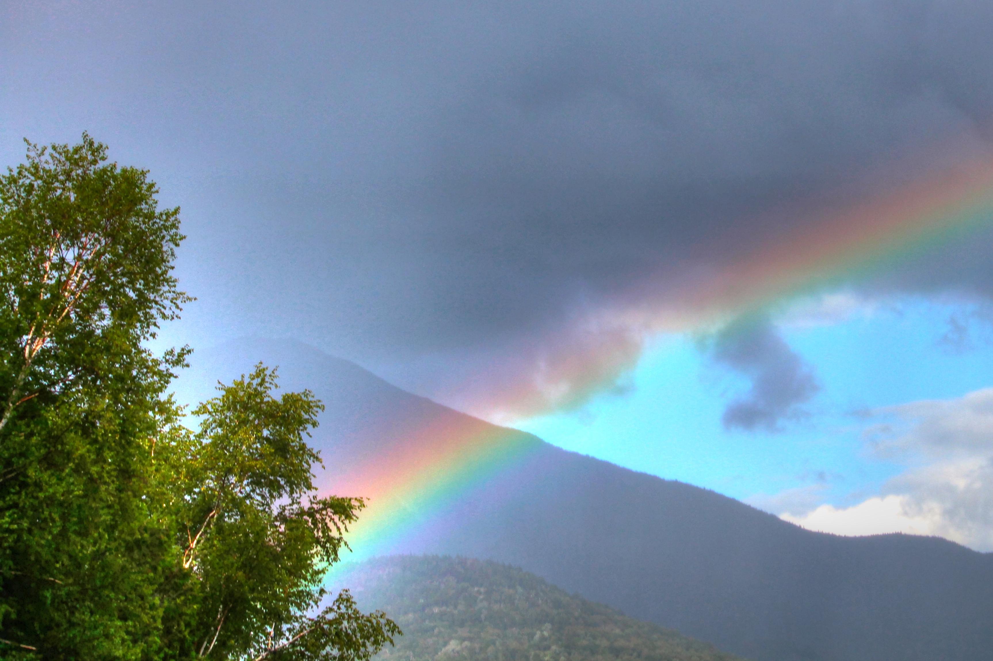 whiteface rainbow