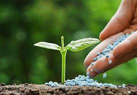 fertilizante-NPK-1023x710.jpg