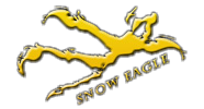 snow-eagle-heated-boot-bag_edited.png