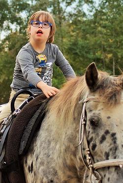 Therapie am Pferd, Gramatneusiedl, Hippotherapie, Ergotherapie, tiergestützte Therapie, PFERDE STÄRKEN, KINDER STÄRKEN, Therapiezentrum
